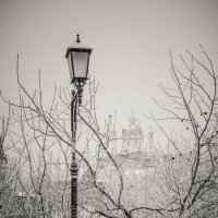 Зимний этюд... :: Сергей Офицер
