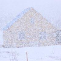 Обильный снег :: Александр Велигура