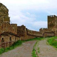 Генуэзская крепость :: Oleg Ustinov