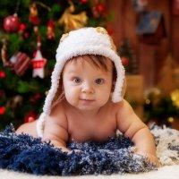 С Новым Годом!!! :: ЭльФото фотограф Эльвира Калантиренко