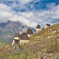 Юлия Вереницына - Мертвый городок,  Даргавс, Северная Осетия :: Фотоконкурс Epson