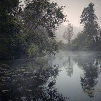 Morning mystical II... :: Roman Lunin
