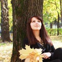 Осень :: лидия Кашицина