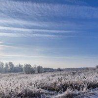 Природа зимняя... :: Анатолий Клепешнёв
