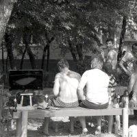 летние кадры :: Lena Zalesska