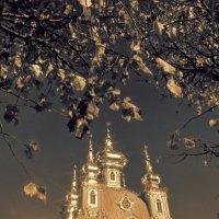 Пригородные дворцы 7 :: Цветков Виктор Васильевич