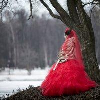 Лила :: ВАЛЕРИЯ Кудрявцева