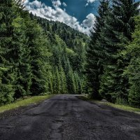 Road in the mountains :: Alex P.