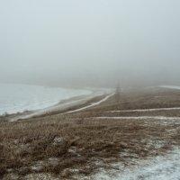 Декабрь.Туман. :: Виктор