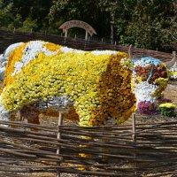 корова из цветов :: Ростислав