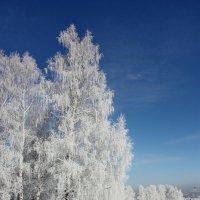 Кудесница-Зима. :: Наталья Юрова