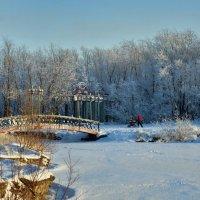 Зимний парк. :: Николай Е