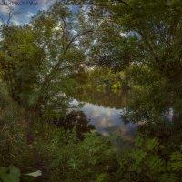"""""""в зелёных объятьях природы"""" :: Taras Oreshnikov"""