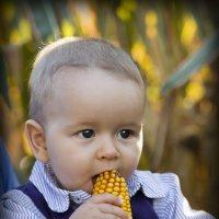 малыш :: Lex Photography