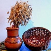 Подарок из Белорусии. :: Евгения Бакулина