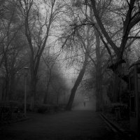 vintage phone booth in the foggy park :: Gor Yeghoyan