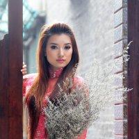 Вьетнамская красавица 5 :: Андрей Малинин