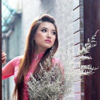 Вьетнамская красавица :: Андрей Малинин