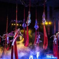 """Цирковой мюзикл """"Сколько стоит любовь?"""" +16 :: Billie Fox"""