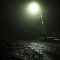 Ночь, улица, фонарь :: Александр Митин