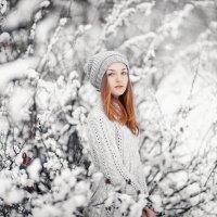 Молодая зима :: Сергей Пилтник