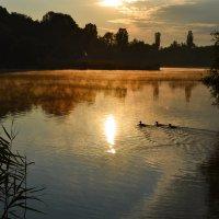 Восход на озере :: Nina Streapan