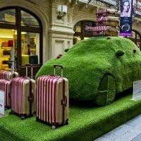 С чемоданами - в путь! :: Ольга Маркова