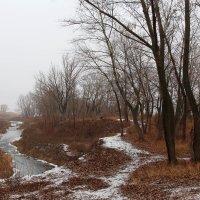 Туманный пейзажъ :: Dr. Olver  ( ОлегЪ )