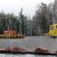 Про дождь :: Наталья Джикидзе (Берёзина)