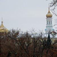 Купола над зимним городом... :: Тамара (st.tamara)