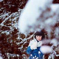 Зимняя сказка.... :: Елена Семёнова