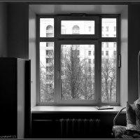 палата № :: Дмитрий Анцыферов