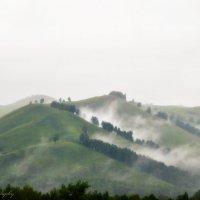Туман :: Вадим Куликов