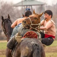 Конная борьба :: Oleg Sharafutdinov