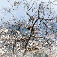 Осень в Иерусалиме :: Георгий Столяров