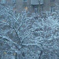 Голубое утро 2 :: Татьяна Юрасова