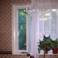 Видит око... :: Oleg4618 Шутченко