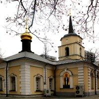 Церковь Покрова Пресвятой Богородицы в Покровском-Стрешнево. :: Larisa
