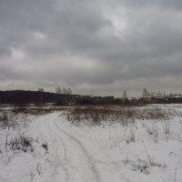 IMG_7266 - Декабрь как он есть :: Андрей Лукьянов