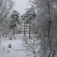 Зима :: Олег Афанасьевич Сергеев