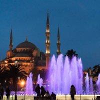 Стамбул. Голубая мечеть. :: Konstantin Markus