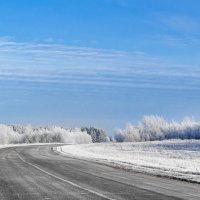 Пустая сельская дорога... :: Анатолий Клепешнёв