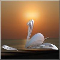белый лебедь :: linnud