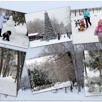 Времена года...Первый день зимы... :: Тамара (st.tamara)