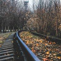 Сoncrete, concrete :: Диана Каргина