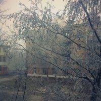 Пасмурное утро :: Valeriya Voice