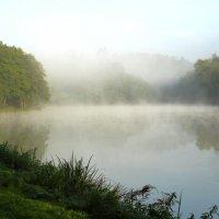 Туман над водой. :: Людмила Шнайдер