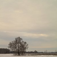 Одиночество :: Алексей Масалов