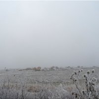 Сельский пейзаж  зимним  туманным утром... :: Тамара (st.tamara)
