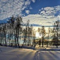 зима на Алтае :: Николай Мальцев